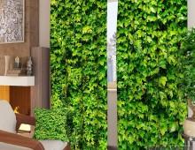 Фотошторы Зеленая стена